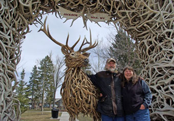 Antler workshop and gallery a bull elk named sue elk antler antler workshop and gallery a bull elk named sue elk antler statues custom made antler chandeliers mirrors with antler frames antler tables aloadofball Images